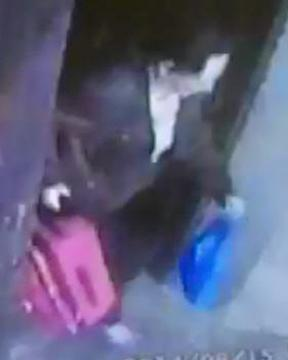 CCTV appeal over alleged suitcase theft