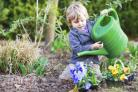 Schools are out for the summer and gardens can provide a pleasurable pastime for young green-fingered enthusiasts.