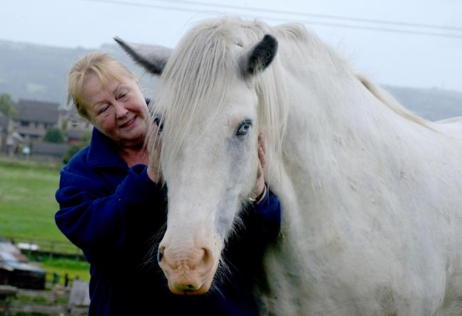 Diane Coulton with Toby, the grey cob which was dumped in the garden of a house in Bradford and has been returned to health