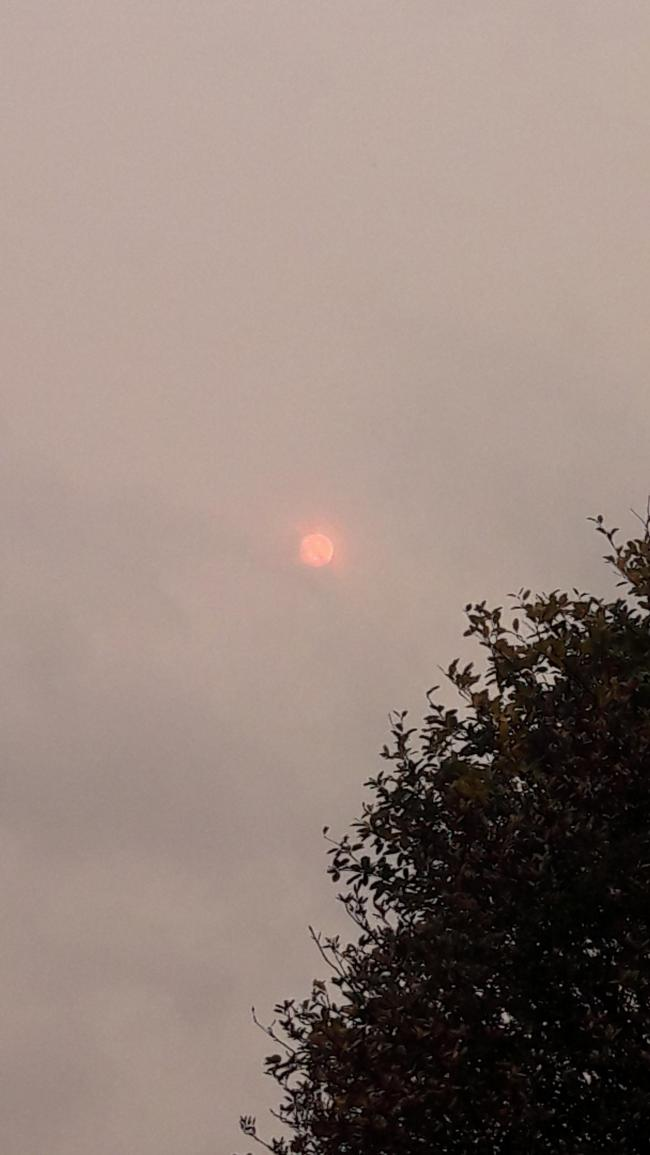 Capturing the dusty red sun this afternoon