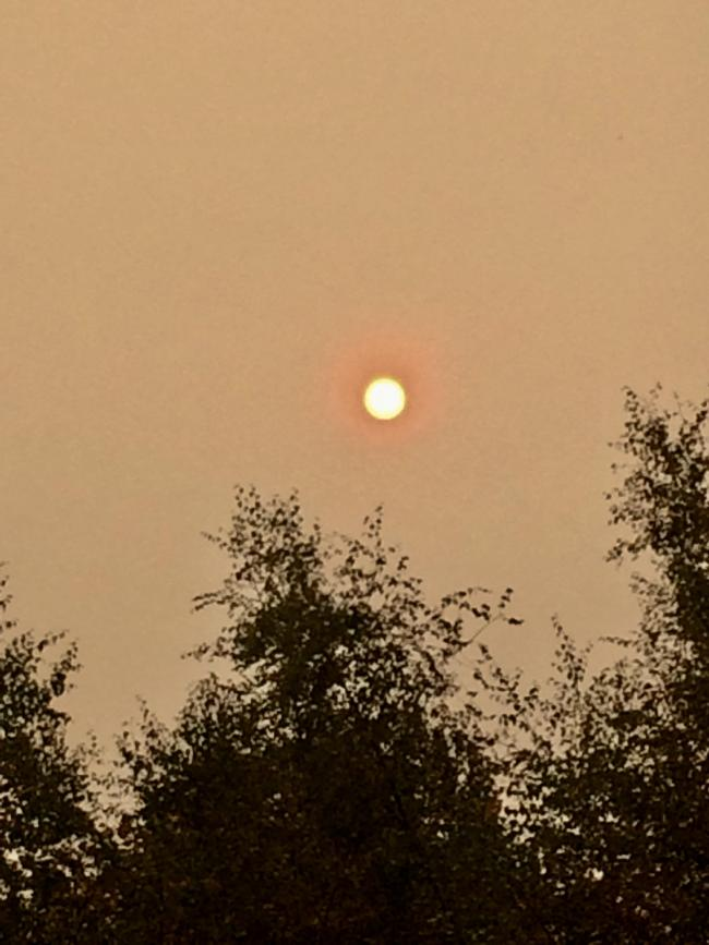 Red sky at 14:04 in Wibsey. The sky went a funny yellow colour and then started to turn orange