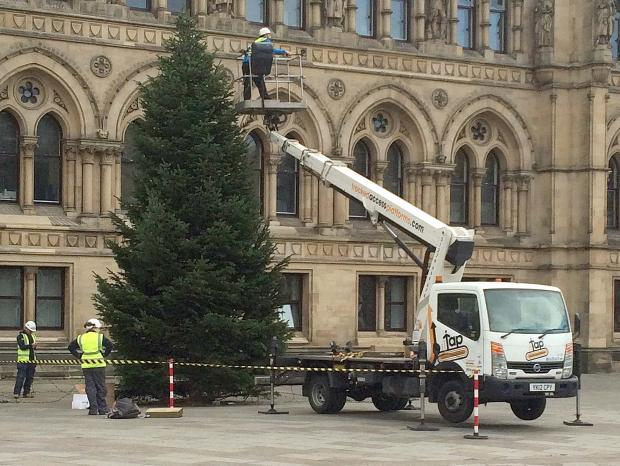Bradford Telegraph and Argus: Workers installing the Chrismas lights onto the trees in Centenary Square.