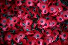 A Poppy Appeal collection box has been stolen in Guiseley.