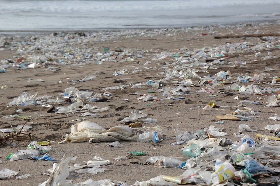 About 80 per cent of pollution in the sea comes from land-based activities such as rubbish dumped in the streets and on beaches. Picture: Pixabay