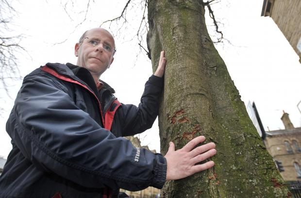 Councillor Martin love with one of Saltaire's trees that could be cut down under a new scheme