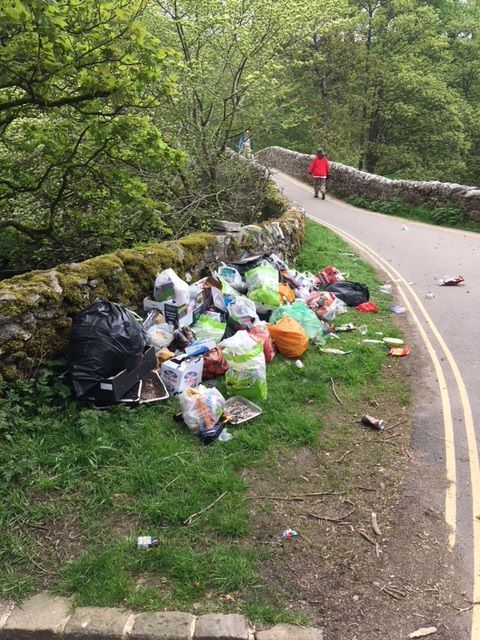 Litter left on the roadside near Stainforth Foss after Bank Holiday Monday