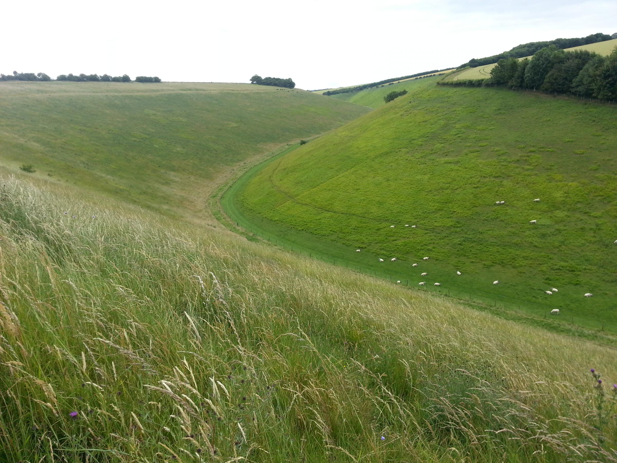 ADVENTURE: The Yorkshire Wolds, an area waiting to be discovered