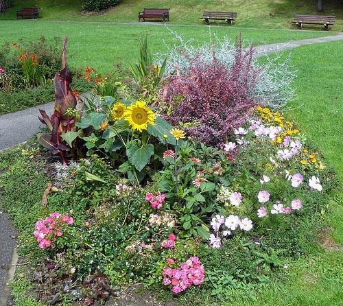 An Ilkley flower bed
