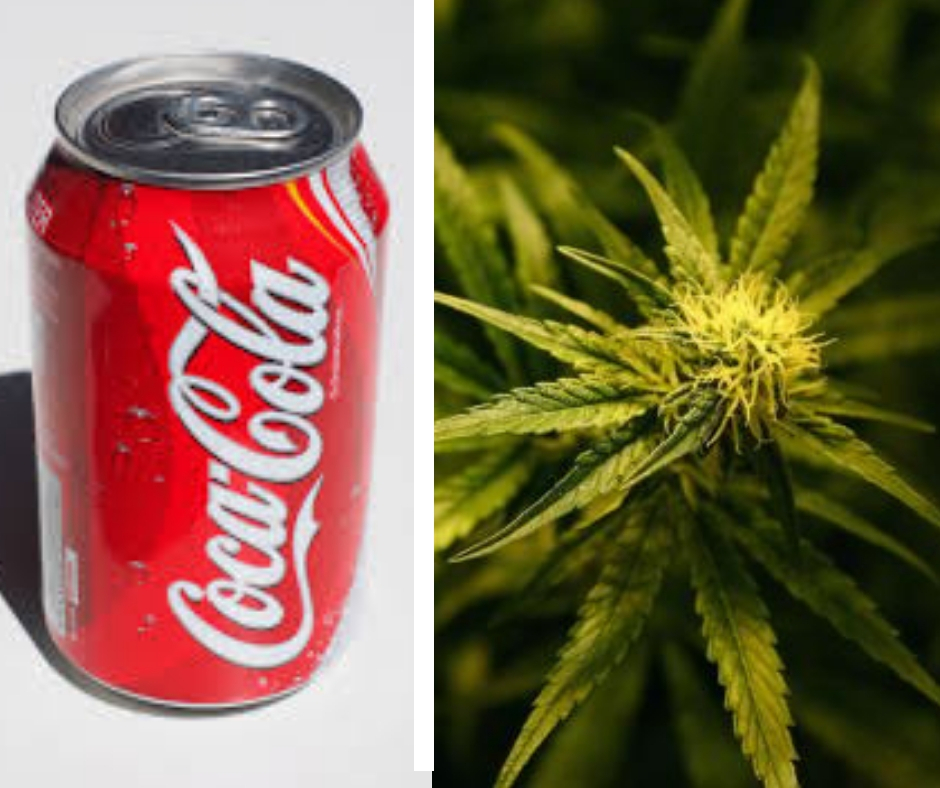Cannabis And Coca Cola