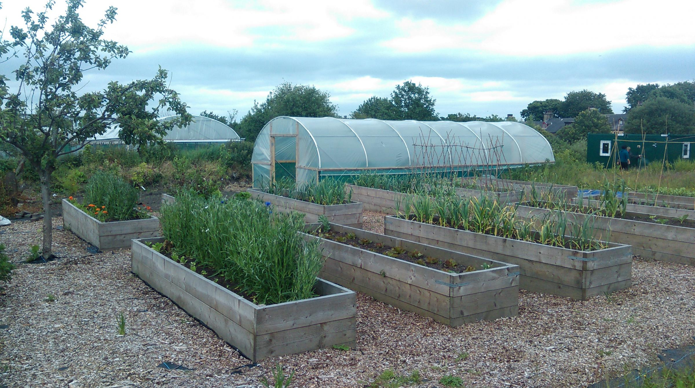 Help on offer for community businesses to grow