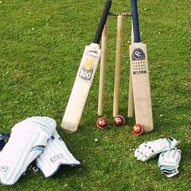 Cricket bats and stumps