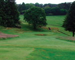 Bradford Telegraph and Argus: Ilkley Golf Club