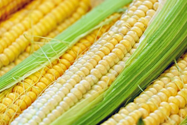 Bank holiday tips - how to barbecue corn on the cob properly