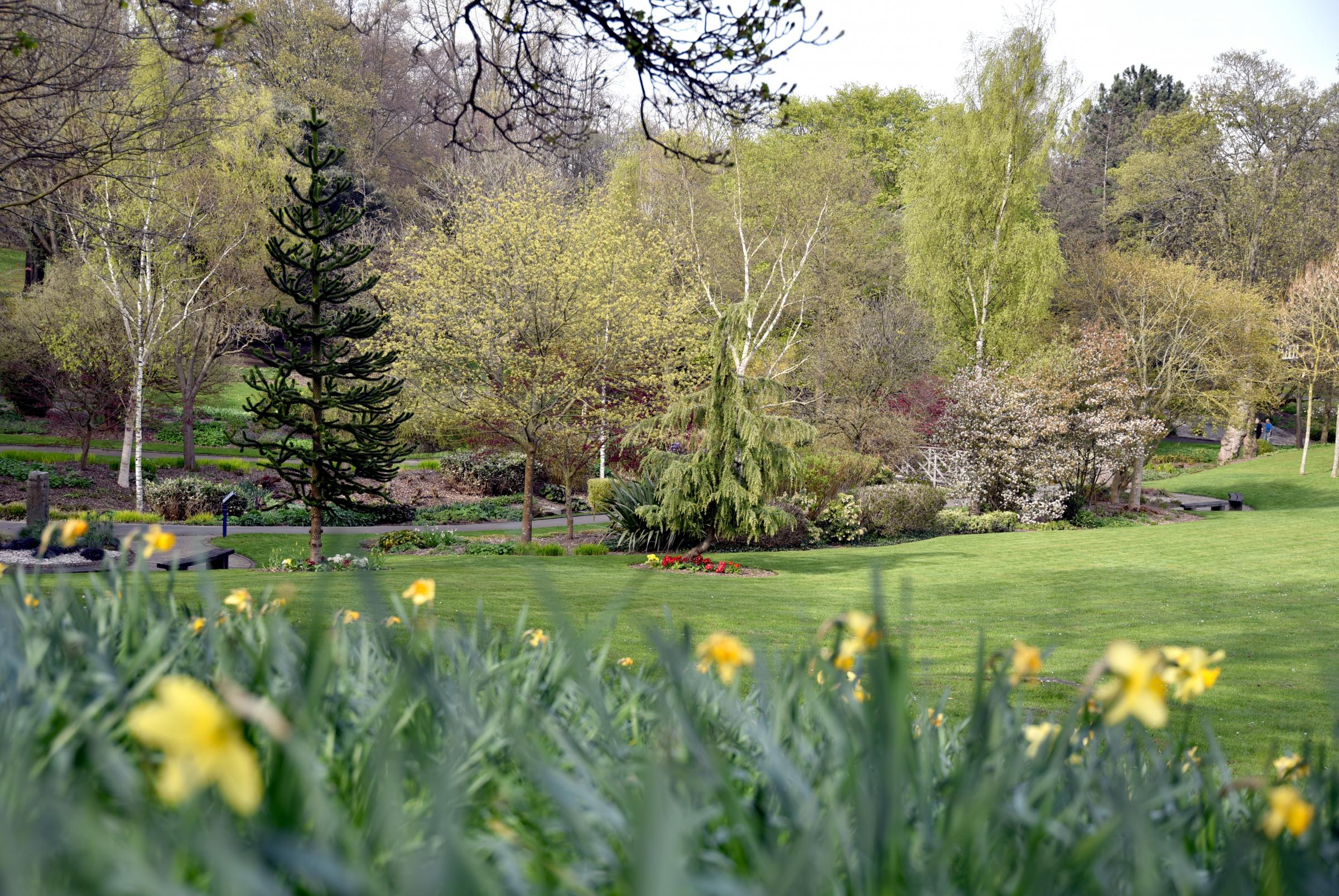 Host of Bradford parks are among some of the best in the country