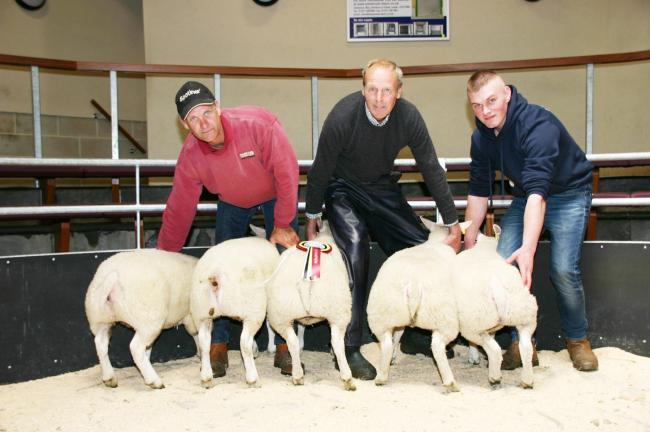 Peter Fox, centre, with his Skipton prime lamb champions with judge and buyer Williamrathmell, right and the mart's Andrew Fisher. Picture, Robin Moule Media