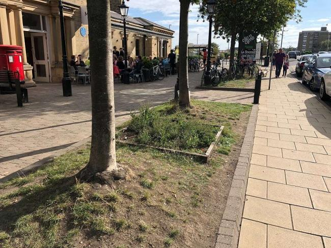 The Station Plaza flower beds which Roger Yaxley wants to improve